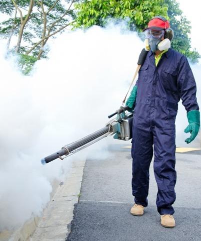 أفضل شركة رش مبيدات